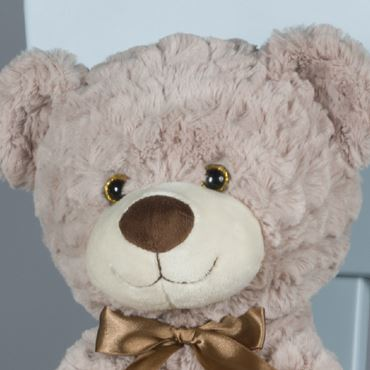 Picture for category BEARS PLUSH