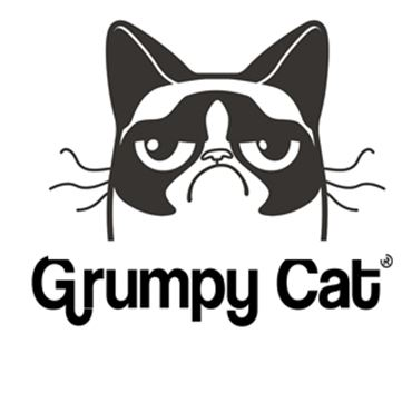 Picture for category GRUMPY CAT